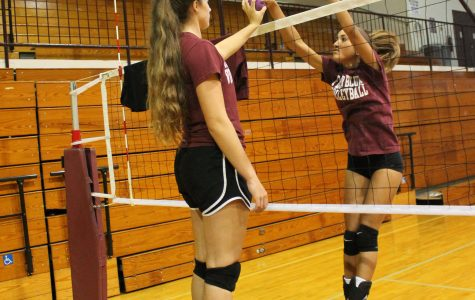 Volleyball works to rebuild with five experienced seniors and freshmen